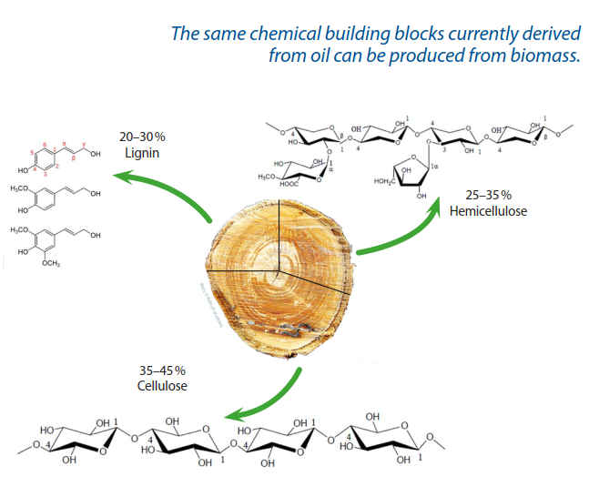 Wood and other lignocellulosic biomasses have a complex chemical structure that consists mainly of cellulose hemicellulose and lignin.